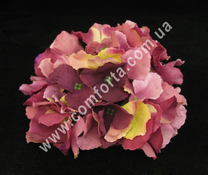 Головка гортензии сиренево-розовая, диаметр ~ 15 см