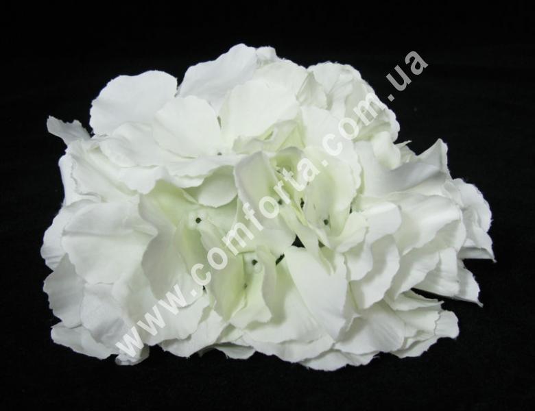 Головка гортензии белая, d ~ 15 см