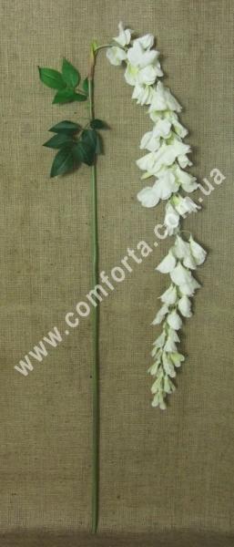 ветка глицинии большой кремовой, высота - 185 см, диаметр цветка - 5 см