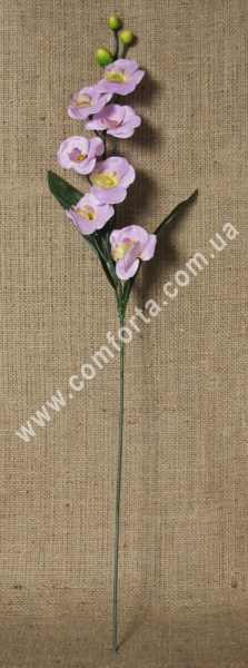 Ветка орхидеи мелкая